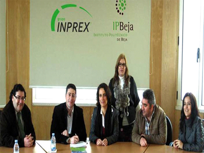Grupo Inprex